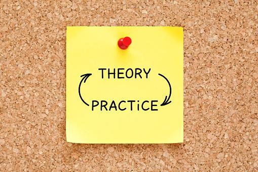theoretical orientation